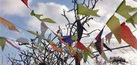 Festa-junina-decorations-featured-620x264 (1)