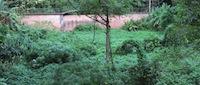 dry-river-bed-rio-rainha-parque-da-cidade-620x264